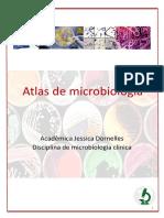 Atlas Citopatologia Ginecológica