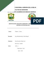Informe 2 Platano. Final