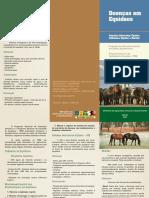 Folder Doenças de Equídeos