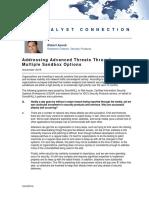 IDC Addressing Advanced Threats Through Multiple Sandbox Options.pdf