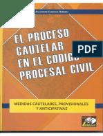 El Proceso Cautelar en el Código Procesal Civil