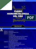73721026 Hidrometalurgia Del Oro Dr Patricio Navarro [Autoguardado]