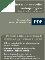 4 Cultura um conceito antropológico.pdf