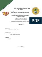 INFORME DE ZULE.docx