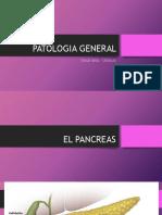PATOLOGIA GENERAL DIABETES 2.pdf