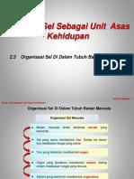 2.3 Organisasi Sel Di Dalam Tubuh Badan Manusia