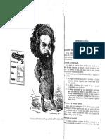 Panesi, Jorge, Introducción a Del Campo, Fausto