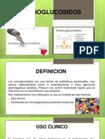 AMINOGLUCOSIDOS DIAPOSITIVAS