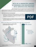 personas_con_discapacidad_en_el_servicio_civil_peruano_2015.pdf