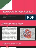 reemplazo valvula aortica