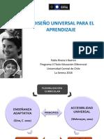 DISEÑO UNIVERSAL PARA EL APRENDIZAJE Y AULAS INCLUSIVAS.pdf