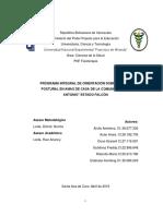 PROYECTO  IGIENE POSTURAL EN AMAS DE CASA.pdf