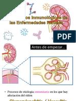Mecanismos Inmunológicos de Las Enfermedades Renales