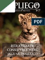 EL PLIEGO - CHIAPAS.pdf