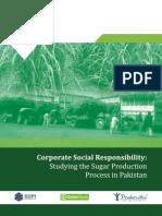 Sugarcane - Pakistan