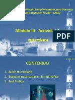 Módulo III Actividad 1