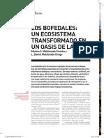 bofedales.pdf