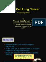 smallcelllungcancer-140817151822-phpapp02.pdf