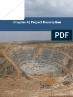 Project Description for Gold mine