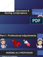 Professional Adjustment & Nursing Jurisprudence