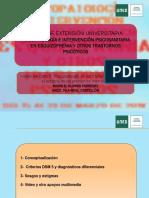 Visión del DSM5. M. Alonso (1).pdf