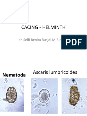 cacing helminth)