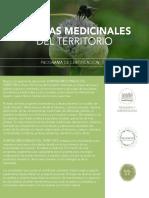 PLANTAS+MEDICINALES+DEL+TERRITORIO_2019+FEBRERO.small.pdf