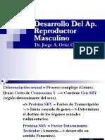 embrio-ap-rep-masc-2017 (1).pdf
