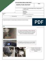 Formato Reporte de Inspeccion