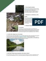 Las 11 Ecorregiones Del Peru