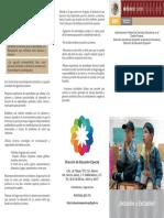 Triptico deficid de atencion.pdf