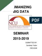 Humanizing Big Data