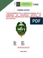 Resumen Ejecutivo-2019 Occopecca