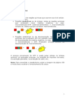 sistemaexcretor (1)