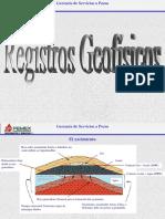 interpretacion de registros geofisicos