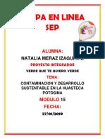 Merazizaguirre Natalia M15S4 PI