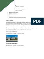 Tipos de viviendas.docx