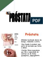 prostata aula