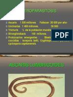 ENTEROPARASITOSIS