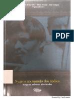 NEGROS E ÍNDIOS NO RN. IMAGENS - REFLEXOS.pdf