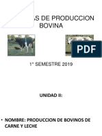 POWER POINT CLASE N°4