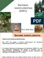 sistemas florestais