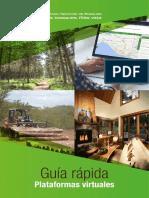 Guía Plataformas Virtuales