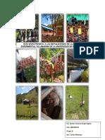 informe materias primas.docx