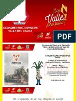 programa campamentos juveniles valle del cauca-insignias