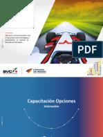 177_Opciones Valoracion.pdf