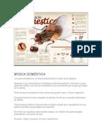 ManualdeMoscasFinal (1)