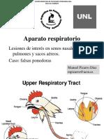 Aparato respiratorio y falsas ponedoras.pdf