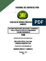 RELACION ESCORRENTIA.pdf