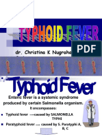 Typhoid Fever by Kristin